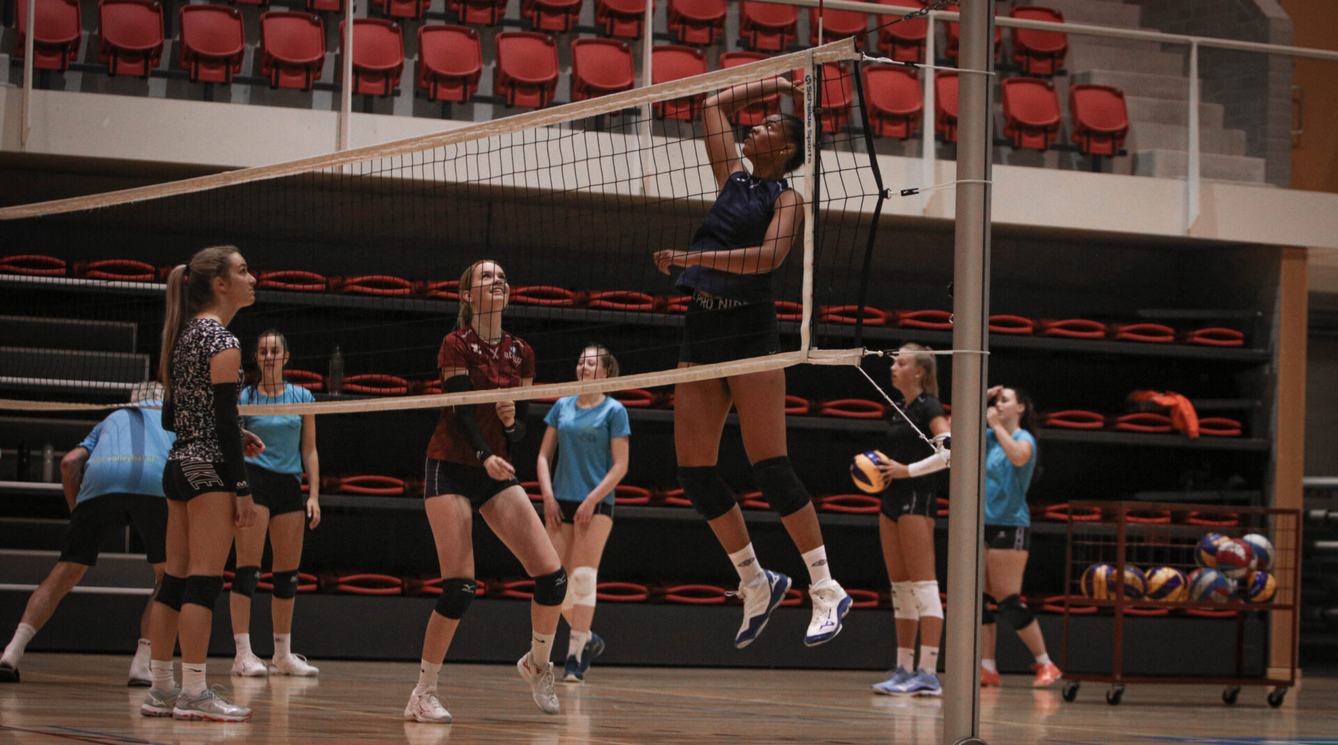 STA-volleybal